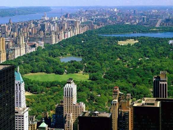 هذه هي نيويورك